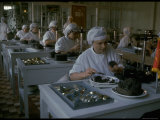 Women Packing Caviar Into Glass Jars for Export at Astrakhan Fish Complex Processing Plant
