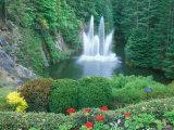 Butchart Gardens  Saanich  Vancouver Island  British Columbia