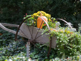 Decorative Wagon and Pumpkin  Ste Genevieve  Missouri  USA