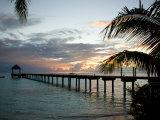 Le Maitai Dream Fakarava Resort  Fakarava  Tuamotus  French Polynesia