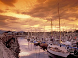 Boats at Sunset  Comox Harbor  British Columbia