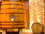 Oak Barrels  Juanico Winery  Uruguay