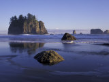 Crying Lady Rock  Second Beach  Olympic National Park  Washington  USA