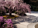 Japanese Gardens in Washington Park  Portland  Oregon  USA