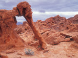 Elephant Rock Sandstone Formation  Valley of Fire State Park  Nevada  USA