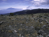 Rocky Terrain with Mountain in the Distance  Kilimanjaro