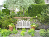 Wooden Bench Below Pyrus Salicifolia with Alchemilla Mollis Growing in the Paving  Worcester