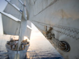 Detail of Star Clipper Sails  Netherlands Antilles