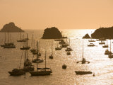 Yachts at Sunset  Gustavia  St Barts