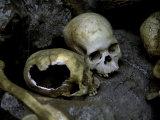 Skulls and Bone  Indonesia