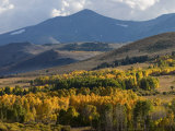 Autumn Descends on the Eastern Sierra Mountains