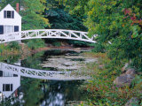 Bridge Over Pond in Somesville  Maine  USA
