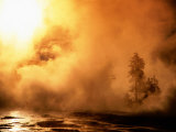 Sunrise at Old Faithful Basin with Rising Steam From Thermals  Yellowstone National Park  USA