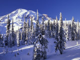 Mount Rainier after a Winter Storm  Mt Rainier National Park  Washington  USA