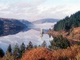 Lake Vernwy  Mid Wales  December 2002