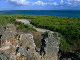 Husuni Kubwa  Kilwa Ruins  Kilwa Kisiwani  South Coast  Tanzania