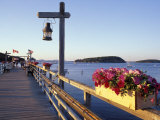 Pier at Frenchman Bay  Maine  USA