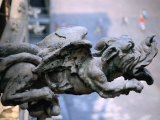 Gargoyle at Roof of Duomo  Milan  Italy