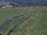 Irrigation Equipment in Hay Field with Bales and Red Barn  Bitteroot Valley  Montana  USA