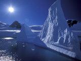 Iceberg Grounded near Shore in Paradise Bay  Antarctic Peninsula  Alaska  USA