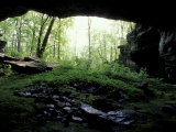 Entrance to Russell Cave National Monument  Alabama  USA
