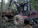 Valmet Forwarder  Green Certification  Logging  Maine  USA