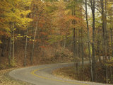 Road Winding Through Autumn Colors  Pine Mountain State Park  Kentucky  USA