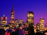 Transamerica Pyramid and City Buildings  San Francisco  United States of America