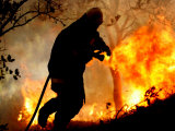 A Fire Fighter Retreats from a Forest Fire Near Fraldeu  Central Portugal
