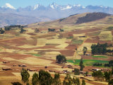 Farmland in the Sacred Valley  Cusco  Peru