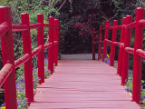 Red Bridge  Magnolia Plantation and Gardens  Charleston  South Carolina  USA