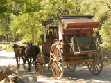 Wagon Tour  Gold Rush Era Park  Columbia State Historic Park  California  USA