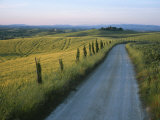 Sunset View of a Gravel Road Winding Through the Tuscan Countryside