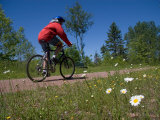 A Man Rides Along a Bike Trail on a Summer Day  Charlottetown  Prince Edward Island  Canada