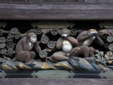 Monkey Carving  Nikko Toshogu Shrine  Japan