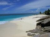 Scenic Tropical Beach  Seychelles