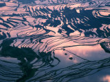 Water-logged Rice Terraces at Sunset  Yunnan Province  China