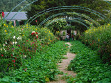 Claude Monet's House and Garden  Giverny  France