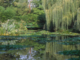 Claude Monet&#39;s Garden Pond in Giverny  France