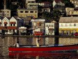 Fisherman in Harbor  St George  Grenada  Caribbean