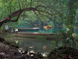 Blue Lagoon  Jamaica  Caribbean