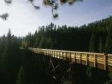 A Cyclist on the Mickelson Trail Bridge which Runs Through the Heart of the Black Hills