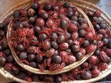 Nutmeg in Public Market  Castries  Caribbean