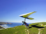 Hang Glider  Otago Peninsula  South Island  New Zealand