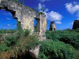 Sugar Plantation Ruins  Betty's Hope  Antigua  Caribbean