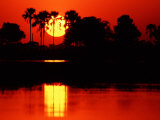 Tropical Sunset  Botswana