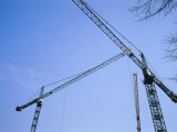 Construction Cranes Stand Against a Clear Blue Sky