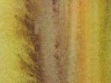 Close-up of Brown and Yellow and Green Streaks of Paint Canvas