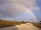 Rainbow Across a Blue Sky  Everglades  Florida