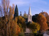Church Steeple in Autumn Leaves  Sonora  USA